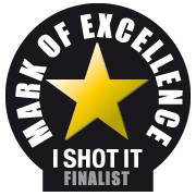 i shot it excellence award logo