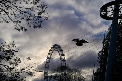 Daily life along London's South Bank and the Christmas Fair stalls. November 30, 2013. Photo: Edmond Terakopian