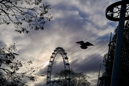 Daily life along London's South Bank and the Christmas Fair stalls. November 30, 2013. Photo: Edmond Terakopian