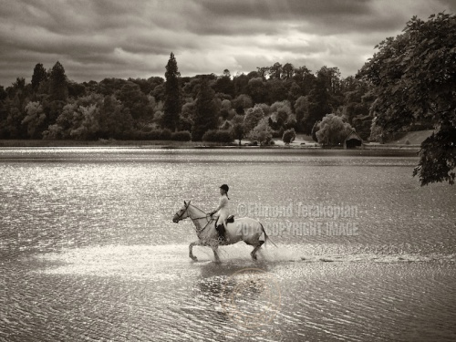 A rider gallops through the lake on her horse. Castle Leslie, Glaslough, Ireland. September 10, 2013. Photo: ©Edmond Terakopian